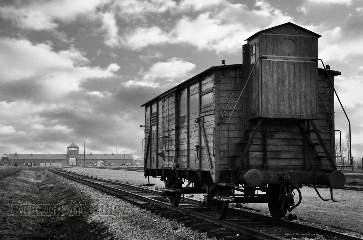 Essay concentration camps auschwitz