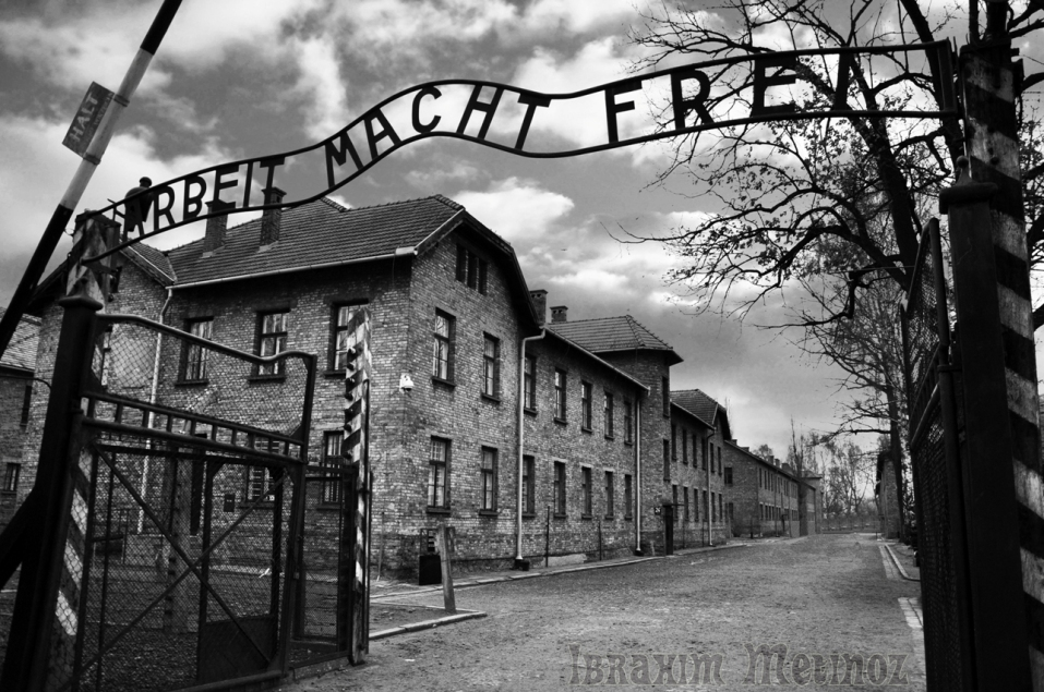 https://ibrahimmetinoz.files.wordpress.com/2012/06/auschwitz07.jpg?w=957&h=636