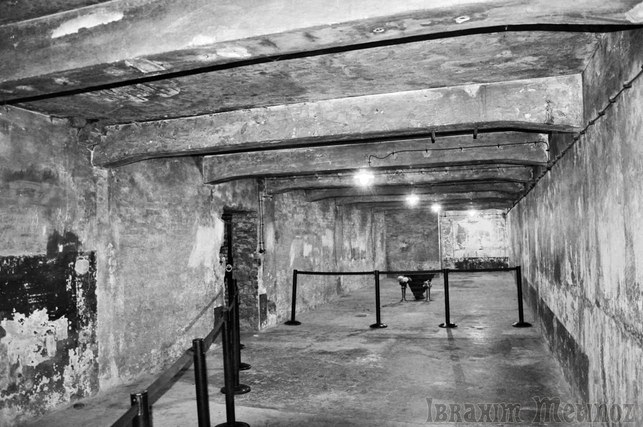 Gas Chamber Holocaust Gas chamberGas Chamber Holocaust Diagram